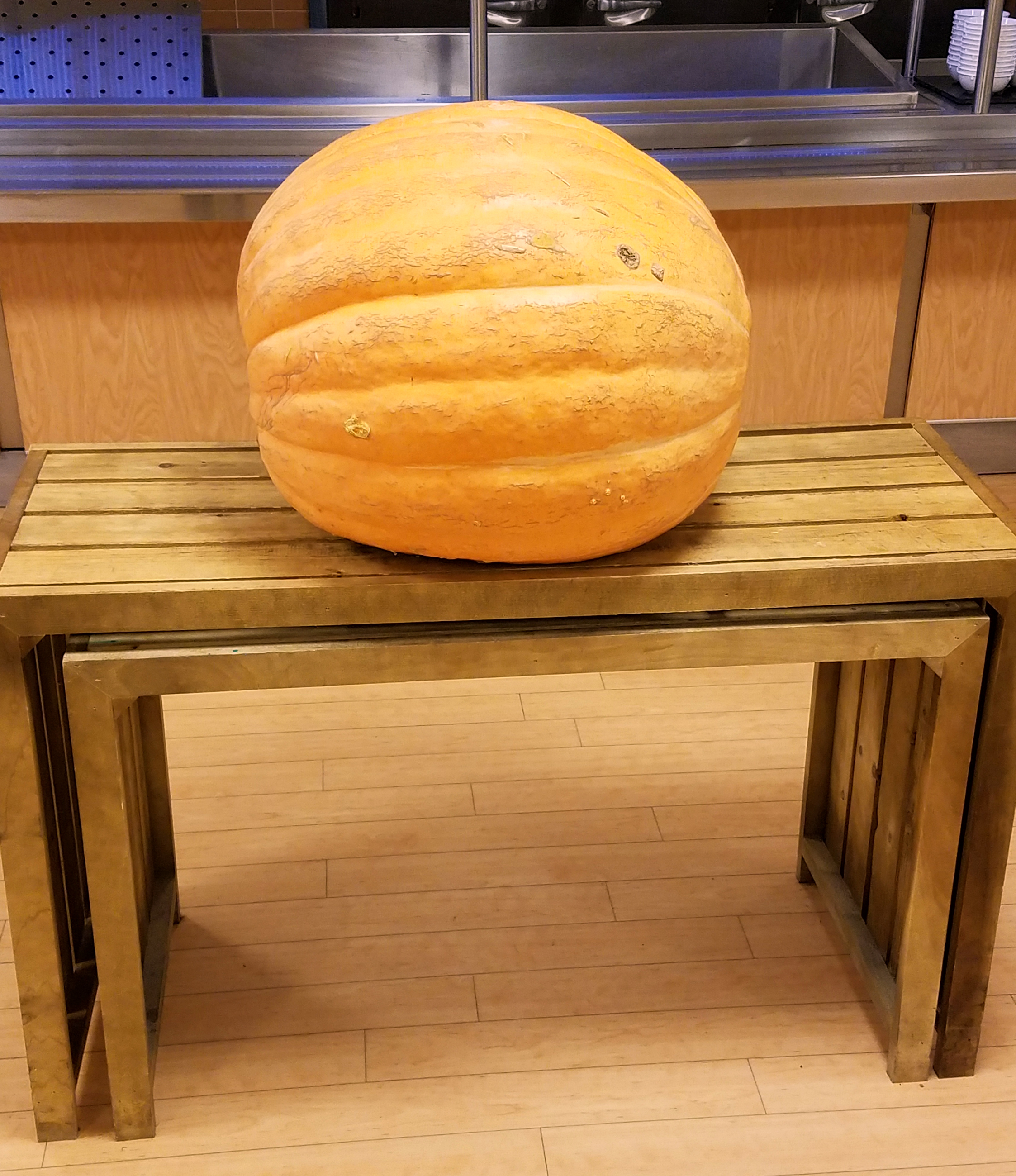 pumpkin_table1